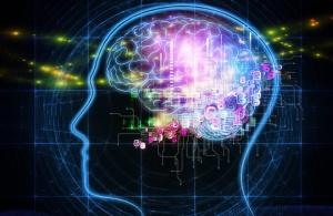 brain_head